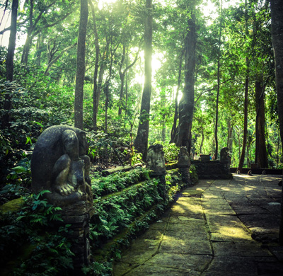 "Photo of the Ubud Monkey Forest - ""MonkeyForest"" by Kandoi.sid - Own work. Licensed under CC BY-SA 3.0 via Commons - https://commons.wikimedia.org/wiki/File:MonkeyForest.jpg#/media/File:MonkeyForest.jpg"