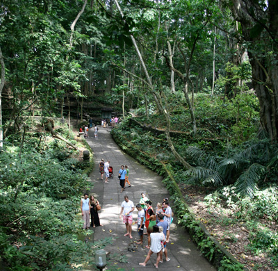 "Photo of tourists at the Ubud Monkey Forest - ""Monkey Forest"" by Merbabu - Own work. Licensed under CC BY-SA 3.0 via Commons - https://commons.wikimedia.org/wiki/File:Monkey_Forest.jpg#/media/File:Monkey_Forest.jpg"